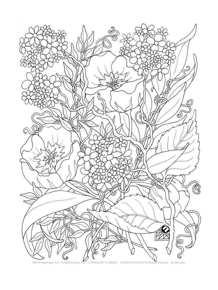 Раскраска цветы взрослая