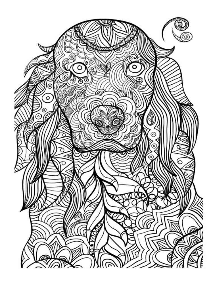 Animals coloring pages for Adults Free Printable Animals