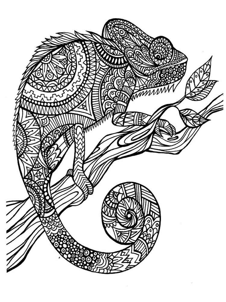 Adult Coloring Pages Animals 16