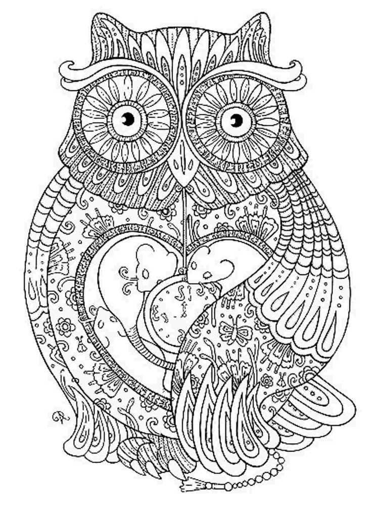Free Owl Coloring Pages For Adults. Printable To Download Owl Coloring Pages .