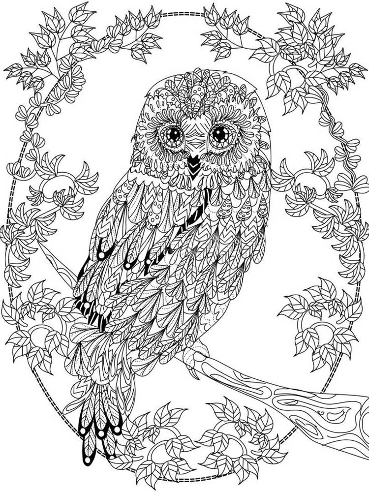 Free Owl coloring pages for Adults. Printable to Download ...