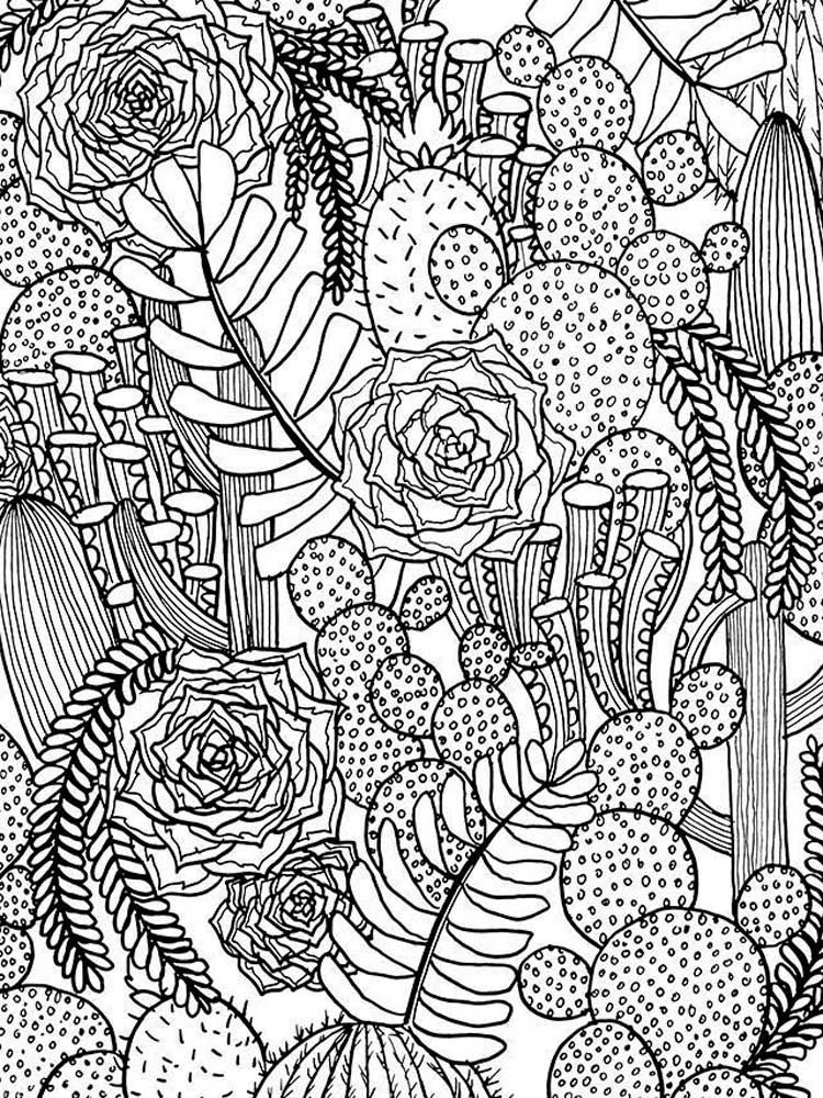 Zentangle Cactus coloring pages for Adults