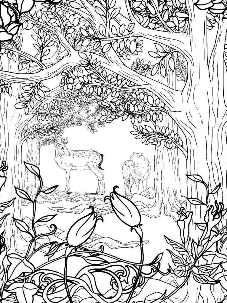 Zentagle Forest coloring pages for Adults