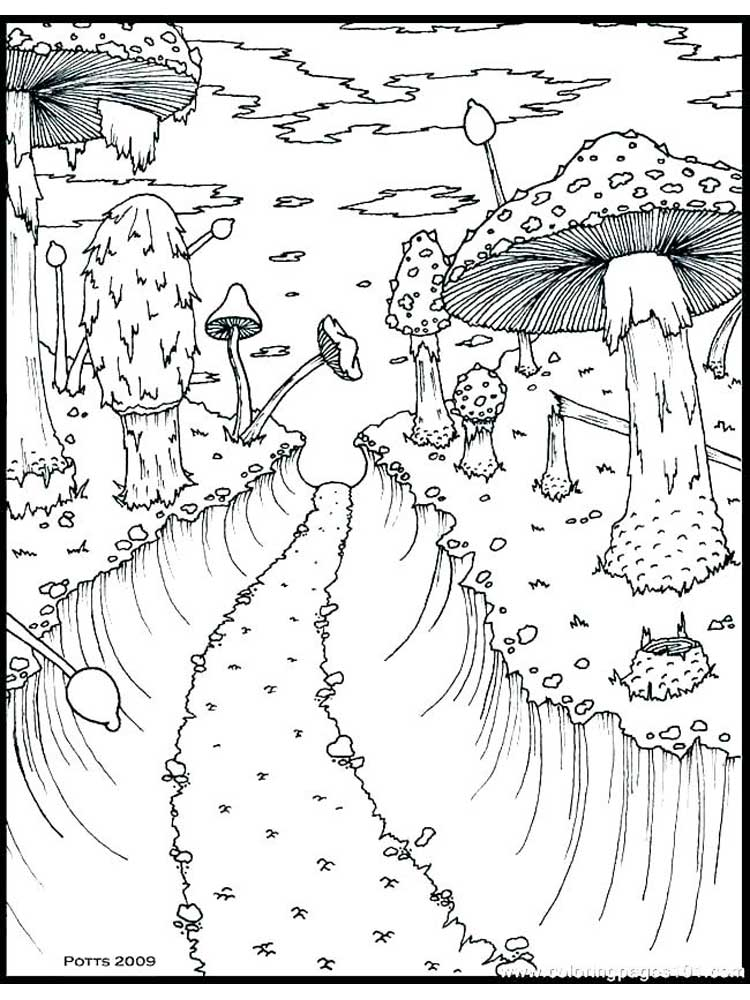 Free Nature Coloring Pages For Adults. Printable To Download Nature  Coloring Pages.