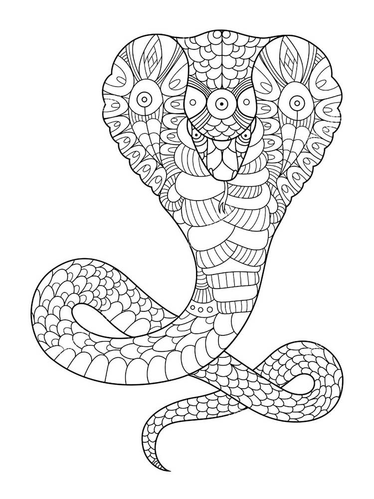 Free Snake coloring pages for Adults. Printable to ...