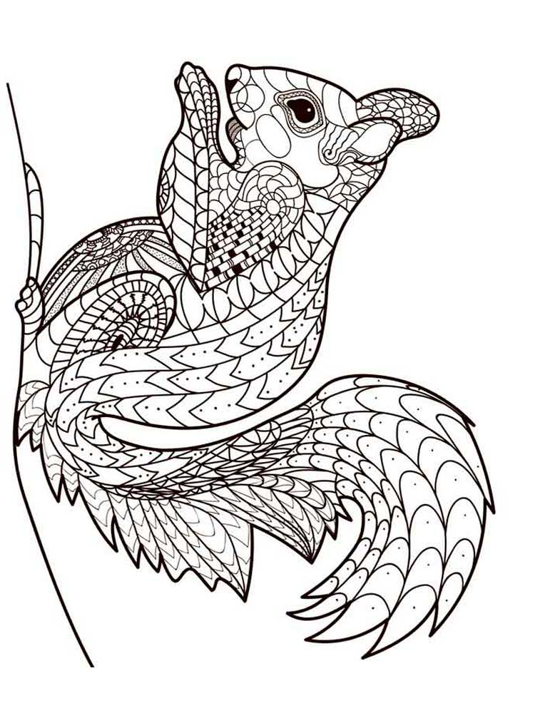 Free Squirrel coloring pages for Adults. Printable to ...