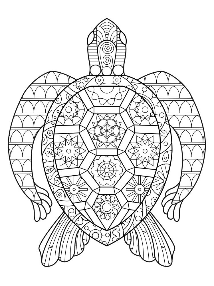 Free Turtle coloring pages for Adults. Printable to ...