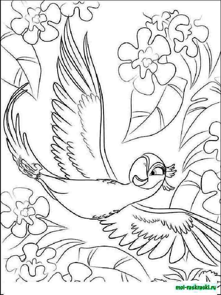 Rio and Rio 2 coloring pages Free Printable Rio and Rio 2 coloring