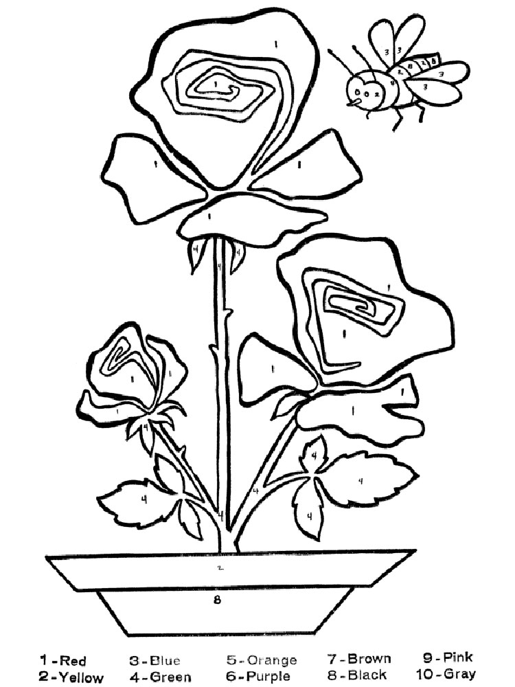 learning colors coloring pages - color by numbers coloring pages download and print color