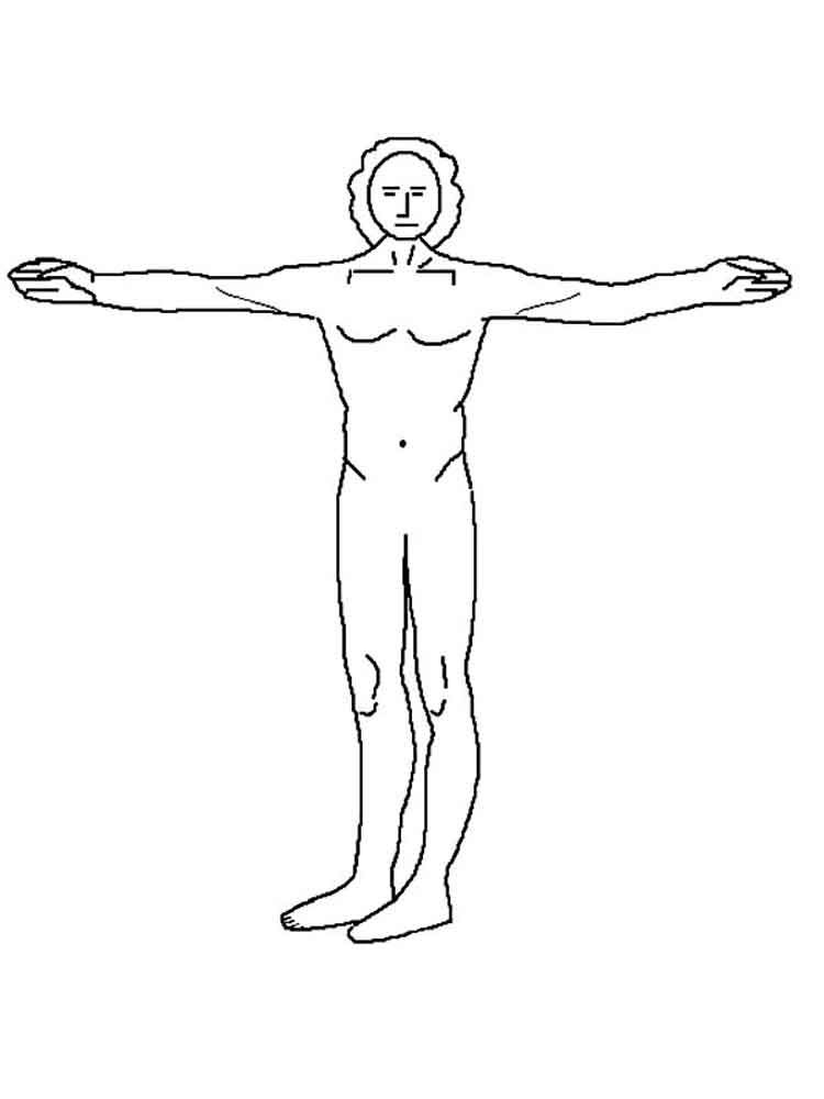 Human Body coloring pages Free Printable Human Body coloring pages