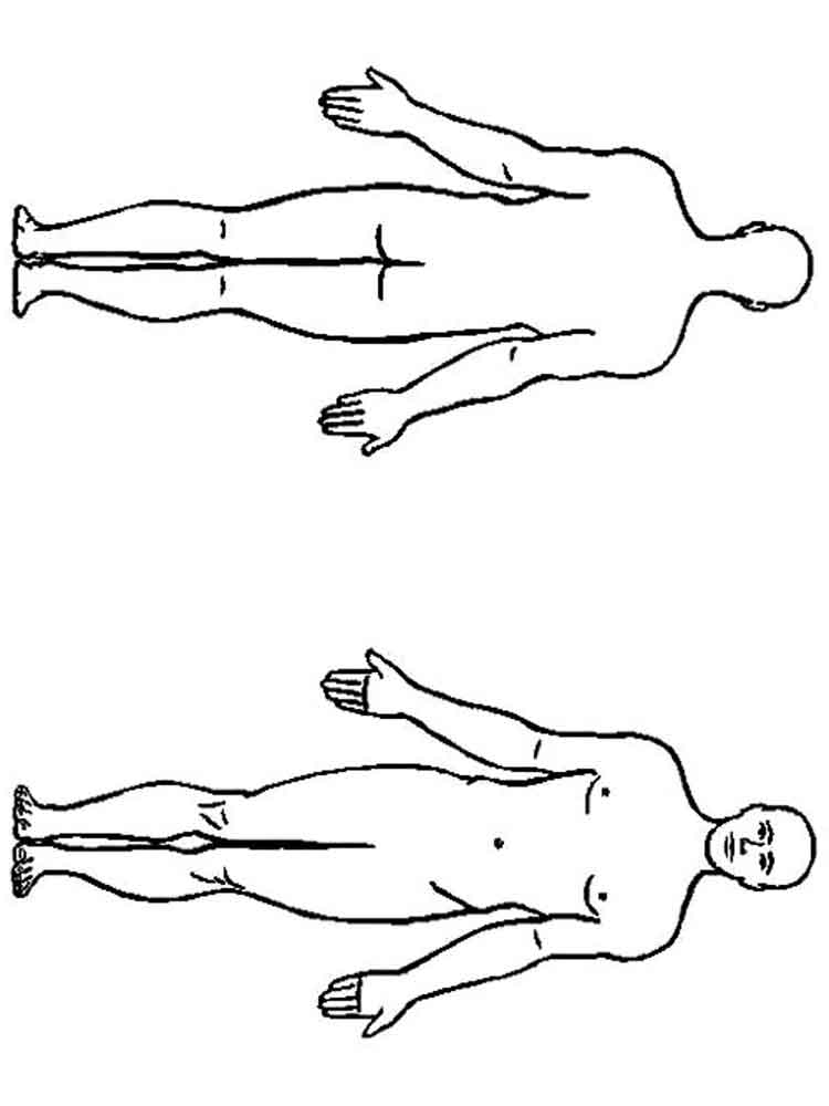 free human body coloring pages - photo#27
