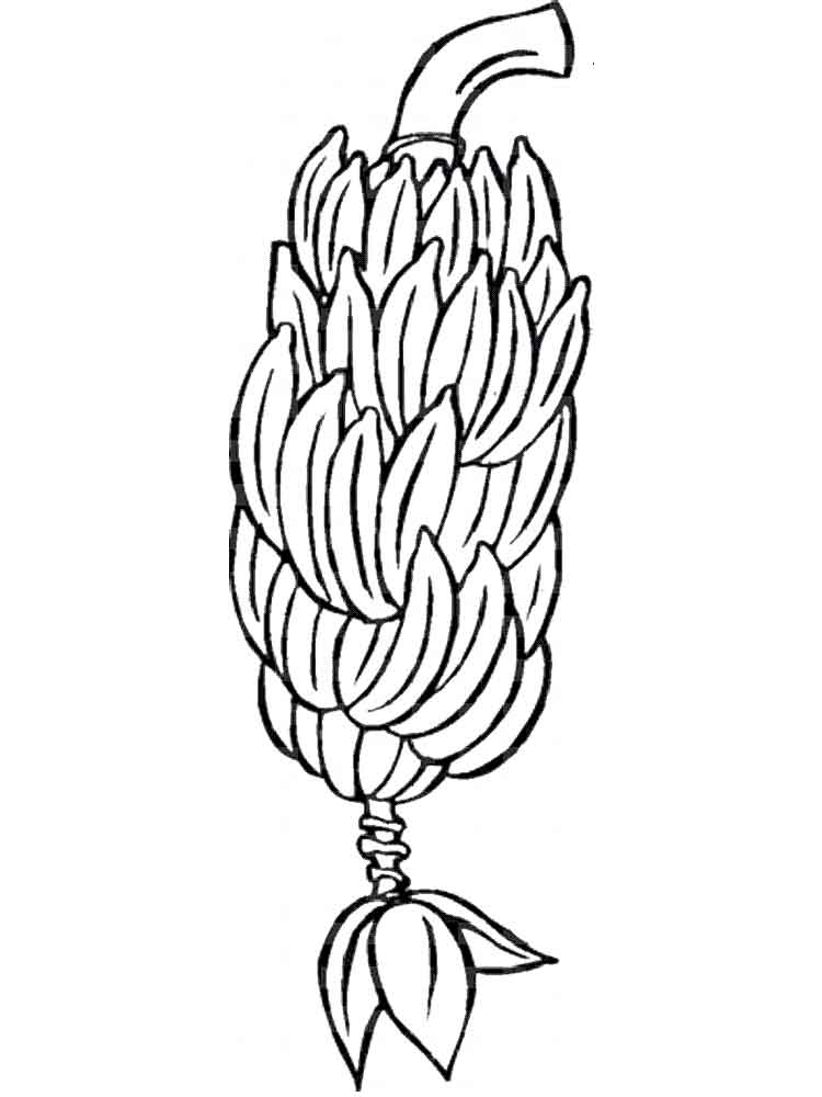 Banana Fruits Coloring Pages 13