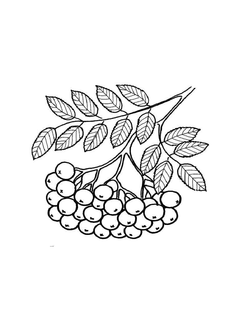rowan coloring pages