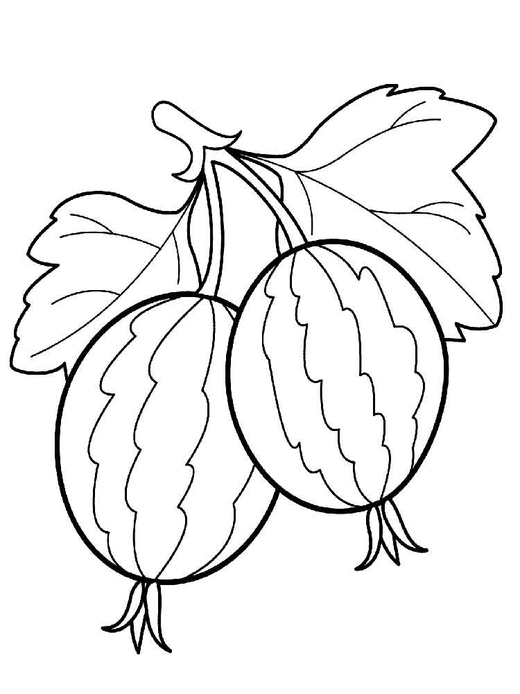 Gooseberry coloring pages Download