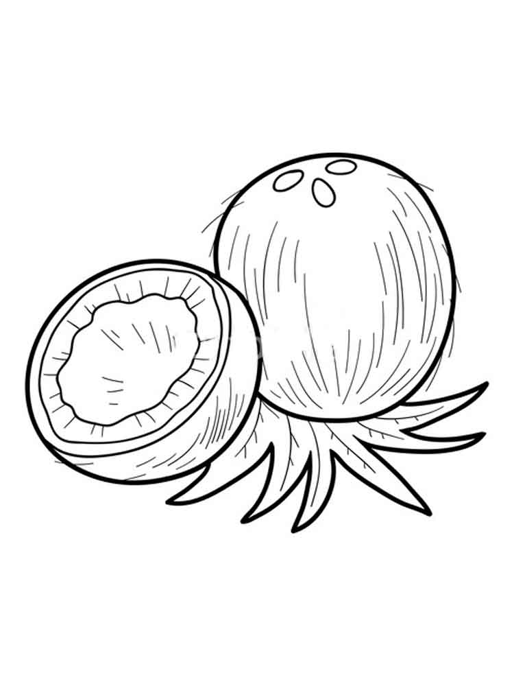 coconut fruits coloring pages 1