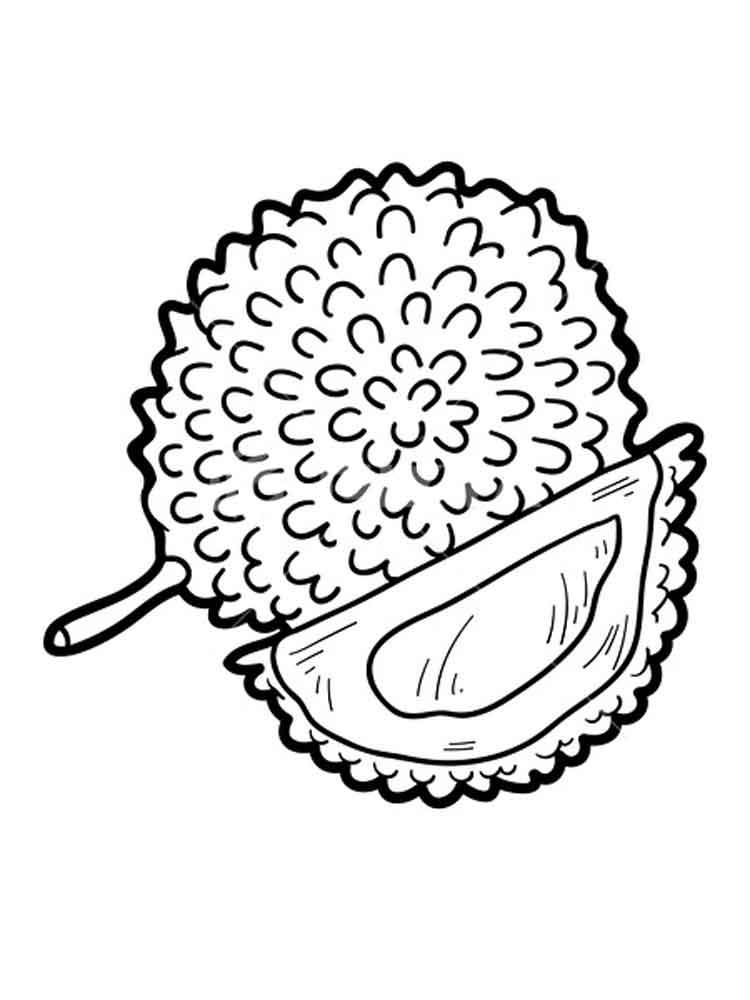 Durian Coloring Pages Download And Print Durian Coloring