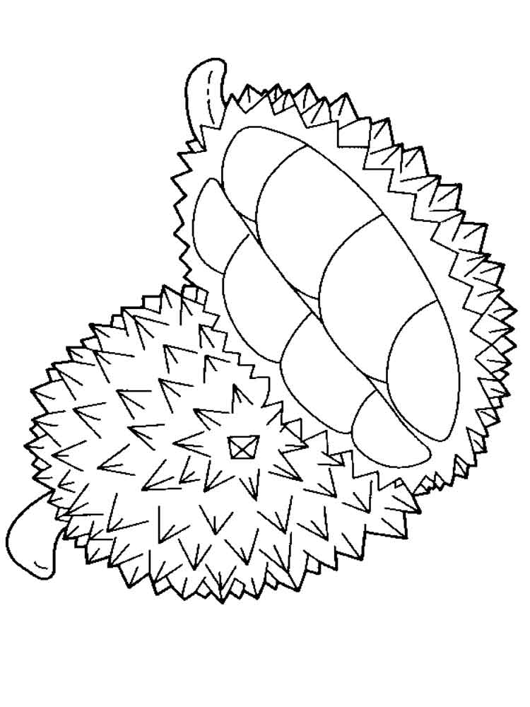durian fruits coloring pages 11