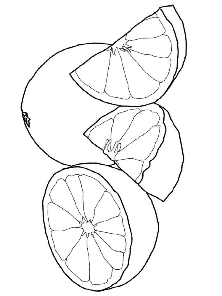 Grapefruit coloring pages Download and print Grapefruit