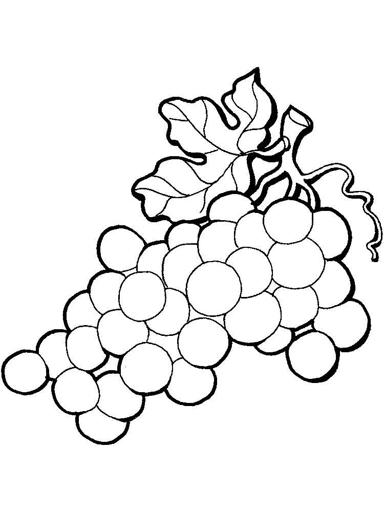 Grape coloring pages Download and print Grape coloring pages
