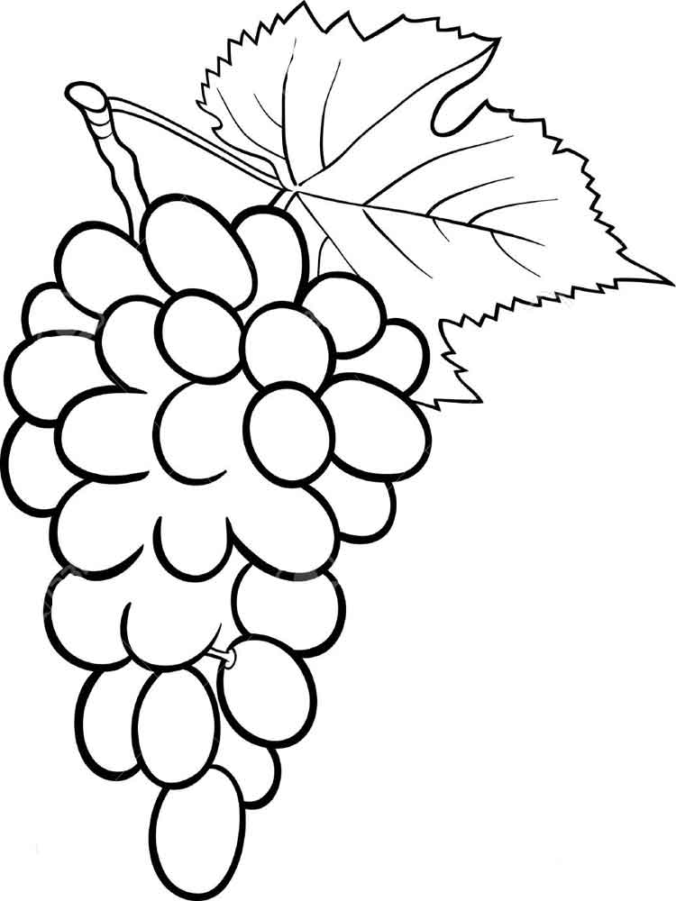 Grape coloring pages Download