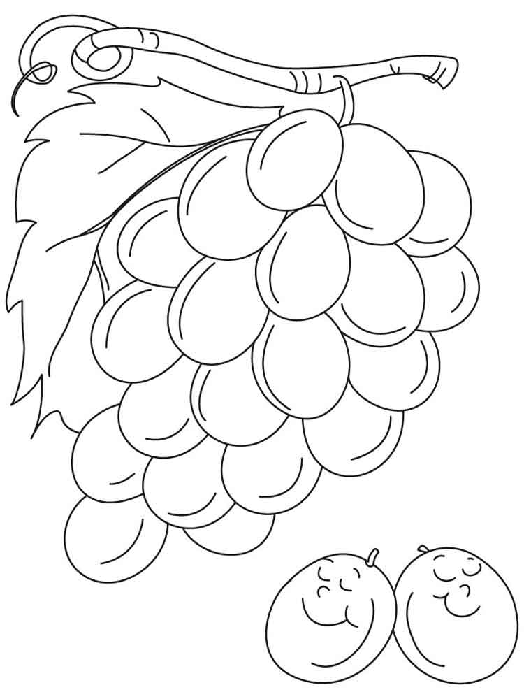 grapes coloring pages for kids - photo#24