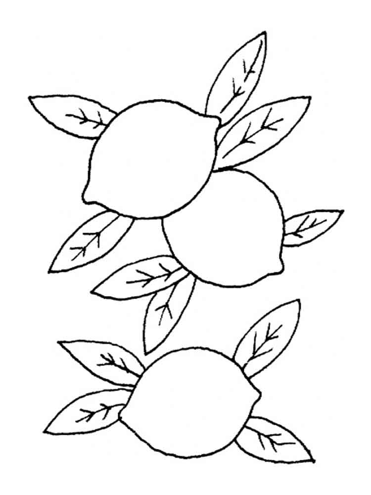lemon coloring pages for kids - photo#24