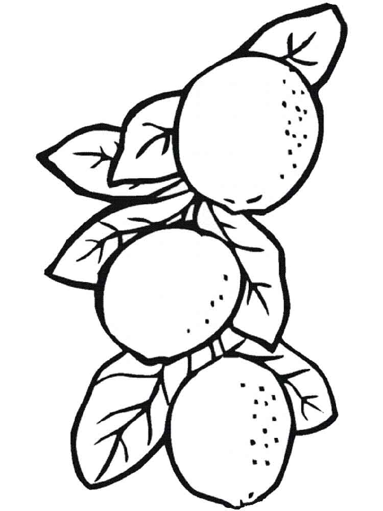 lemon fruits coloring pages 13