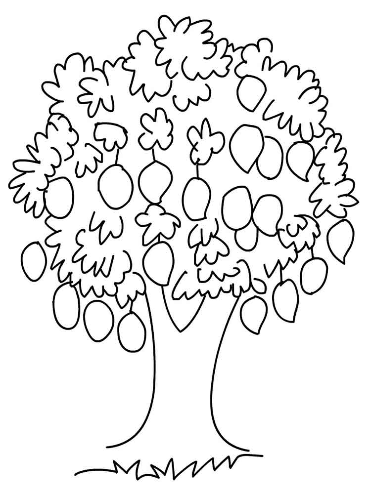 mango fruits coloring pages 12