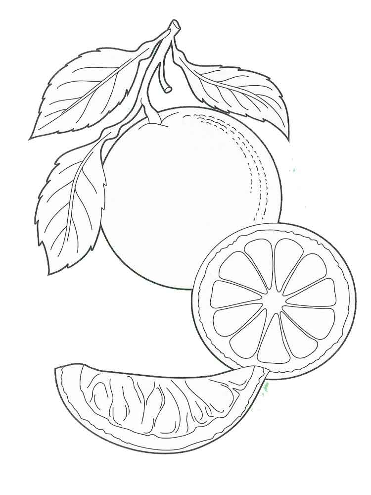 Orange coloring pages Download