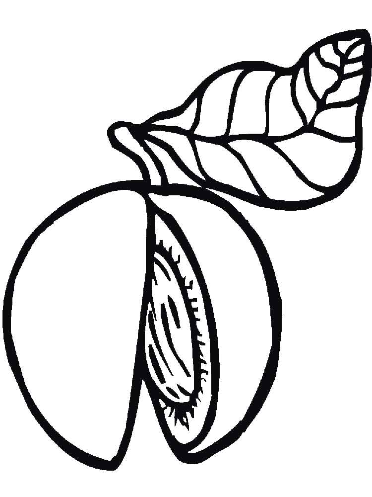 Peach Tree Colouring Pages Page 2 Sketch Coloring Page