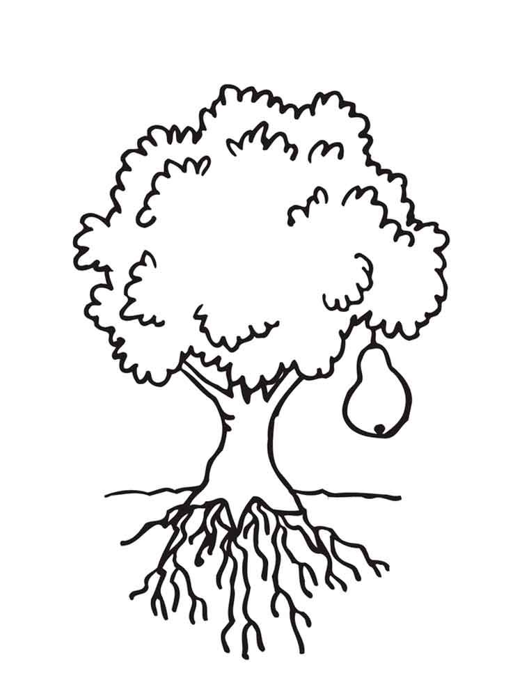 Pear coloring pages Download and