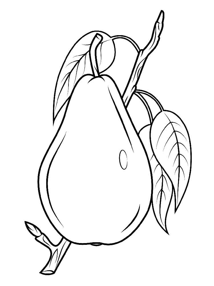 pear coloring pages - photo#26
