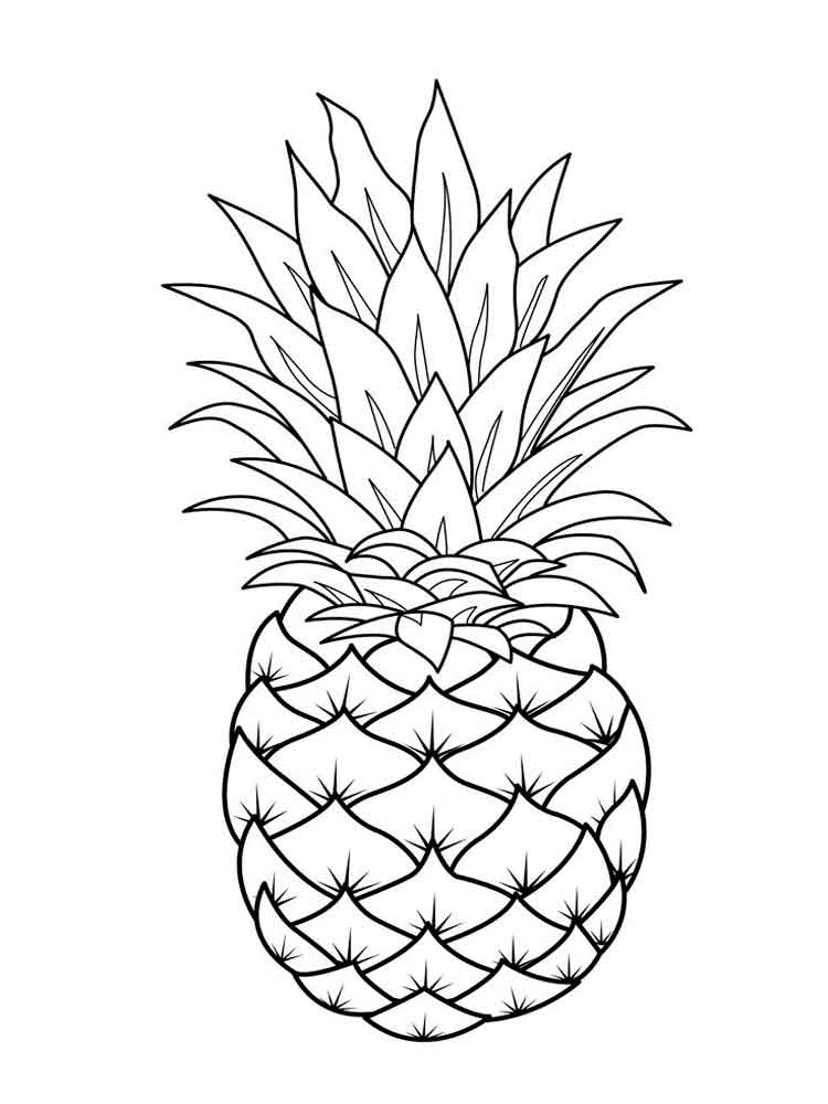 pineapple coloring page - pineapple coloring pages download and print pineapple