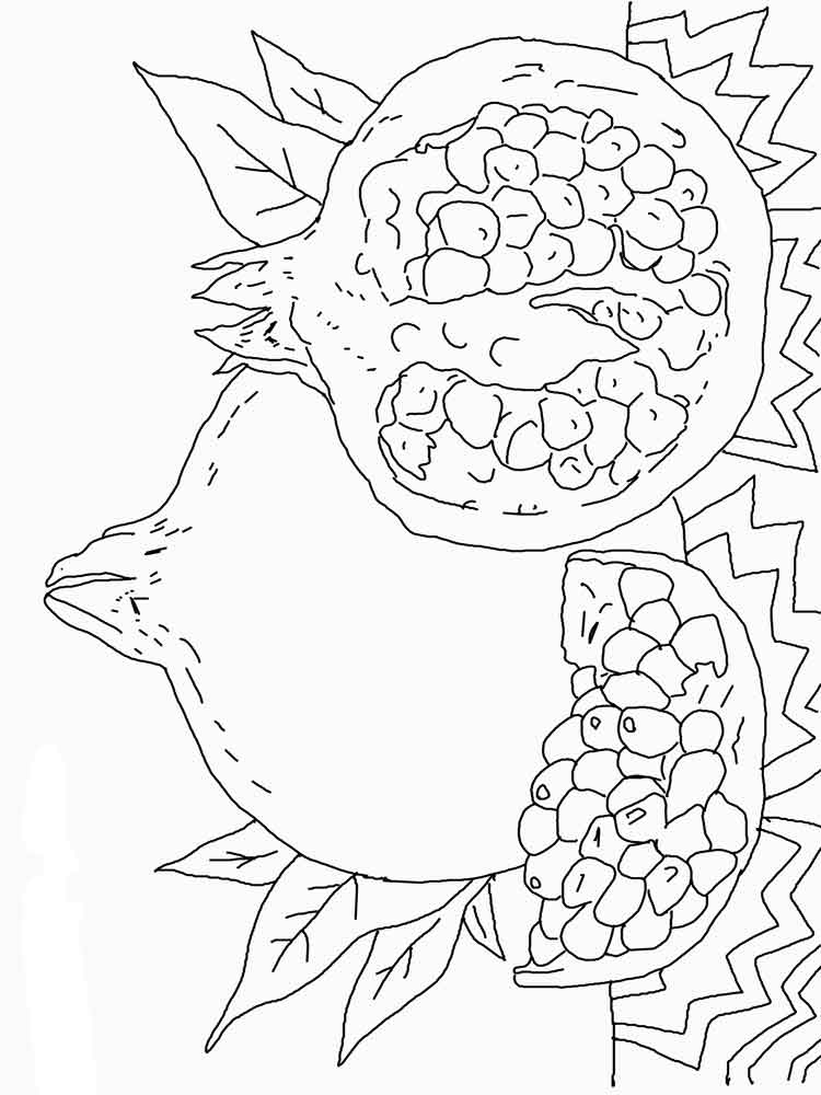 Pomegranate coloring pages Download