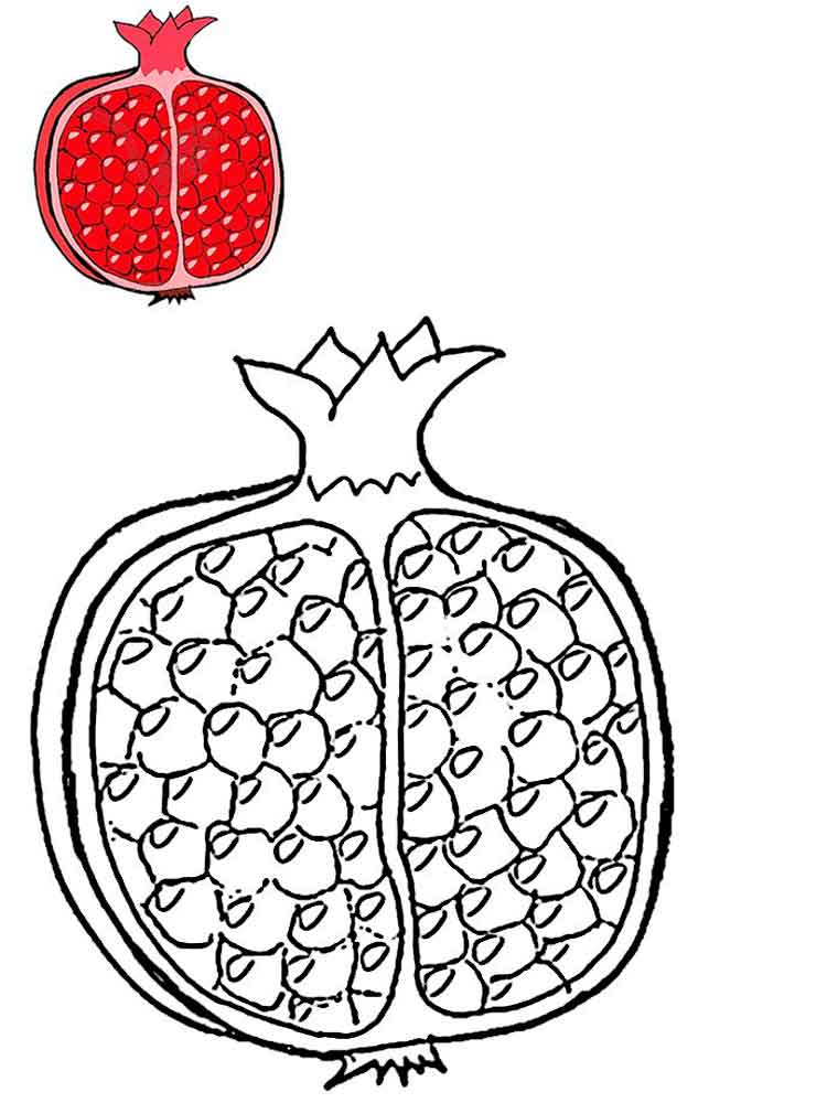 pomegranate fruits coloring pages 3