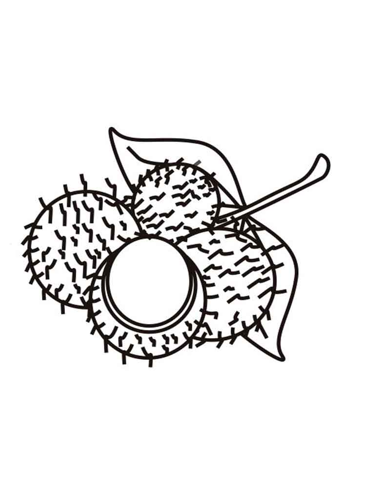 rambutan fruits coloring pages 2