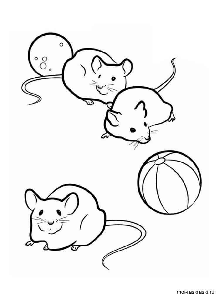 Mouse coloring pages download and print mouse coloring pages for Rat coloring pages