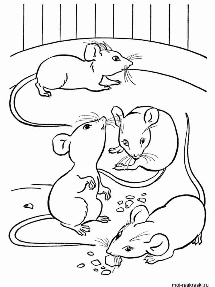 Mouse coloring pages Download