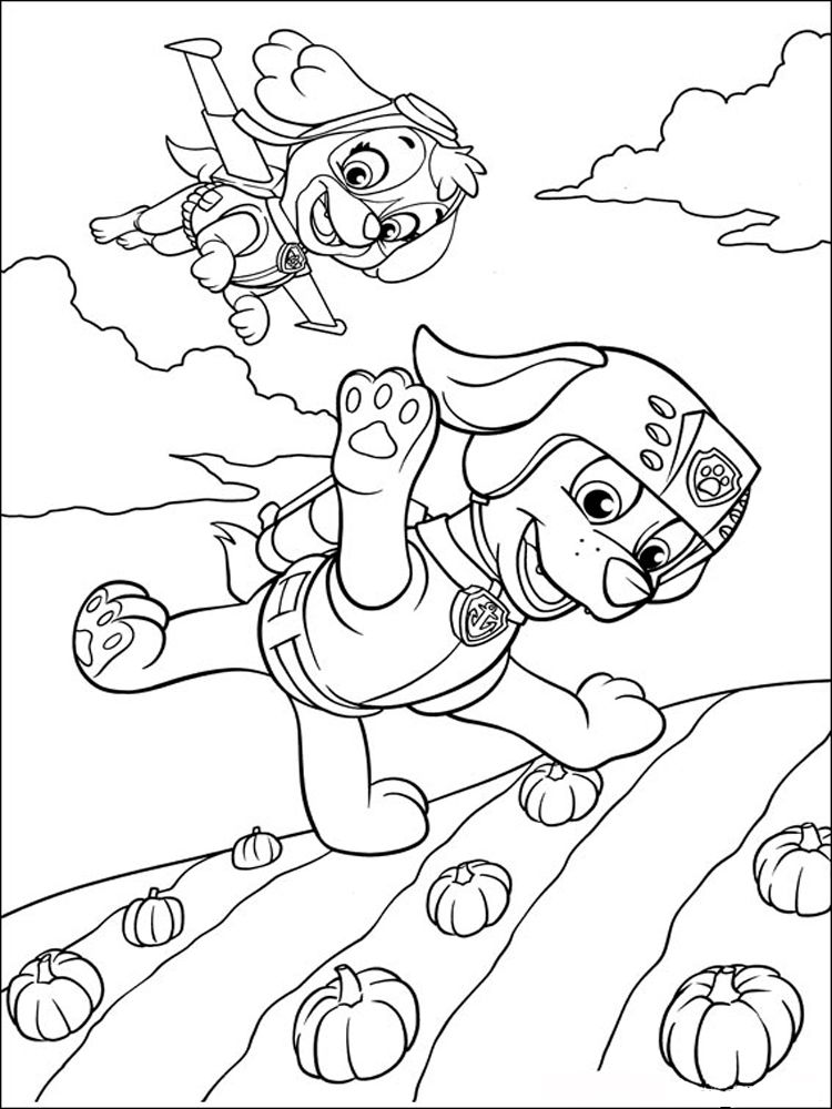 Zuma Paw Patrol Coloring Pages Download And Print Zuma