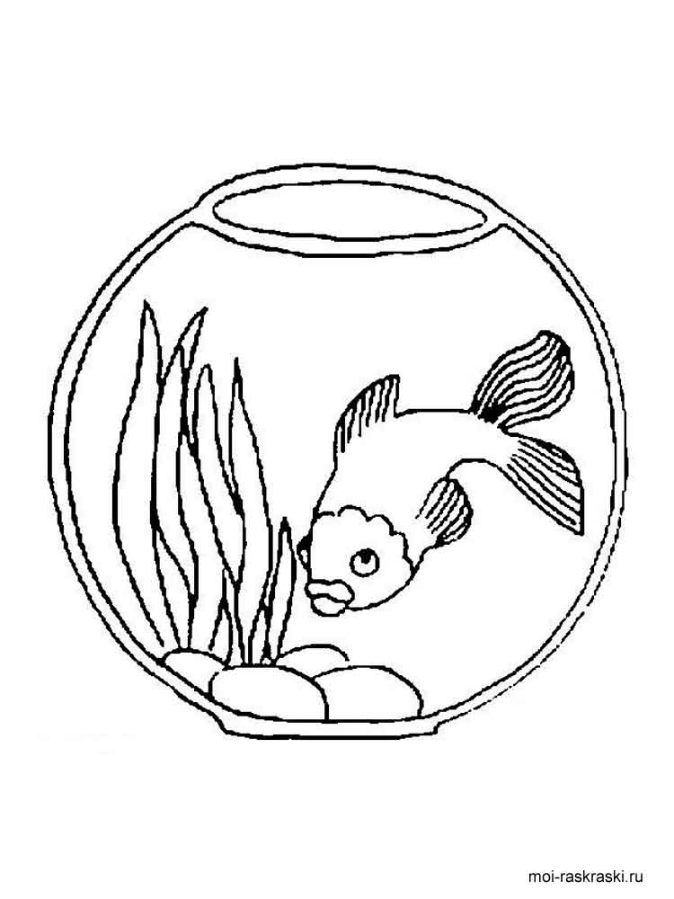 aquarium plants coloring pages - photo#23