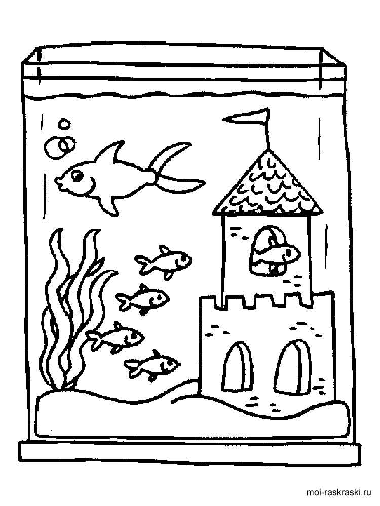 aquarium plants coloring pages - photo#29