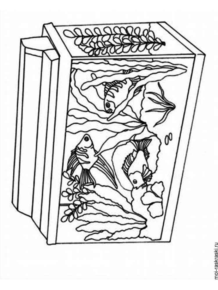 aquarium plants coloring pages - photo#26