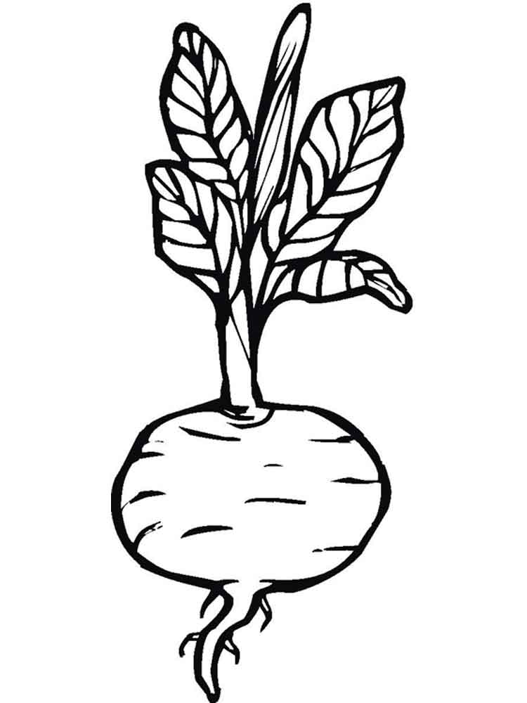 Beets Coloring Pages