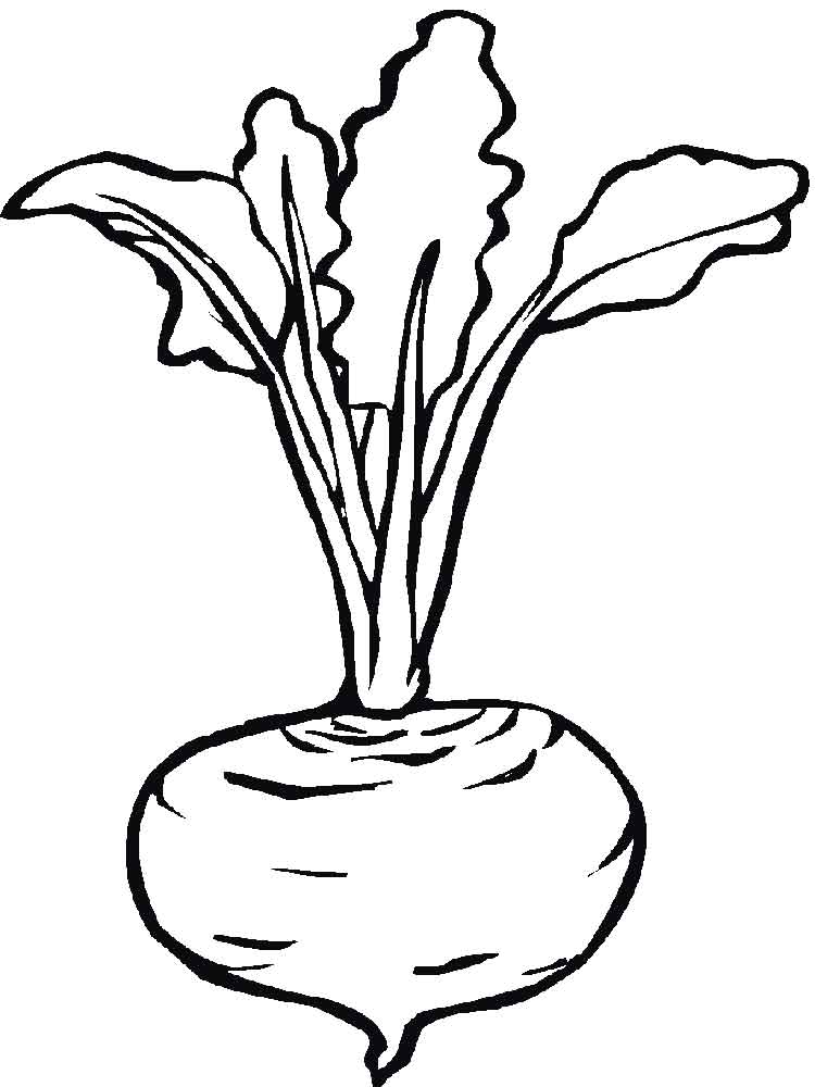 vegetables beet coloring page 6