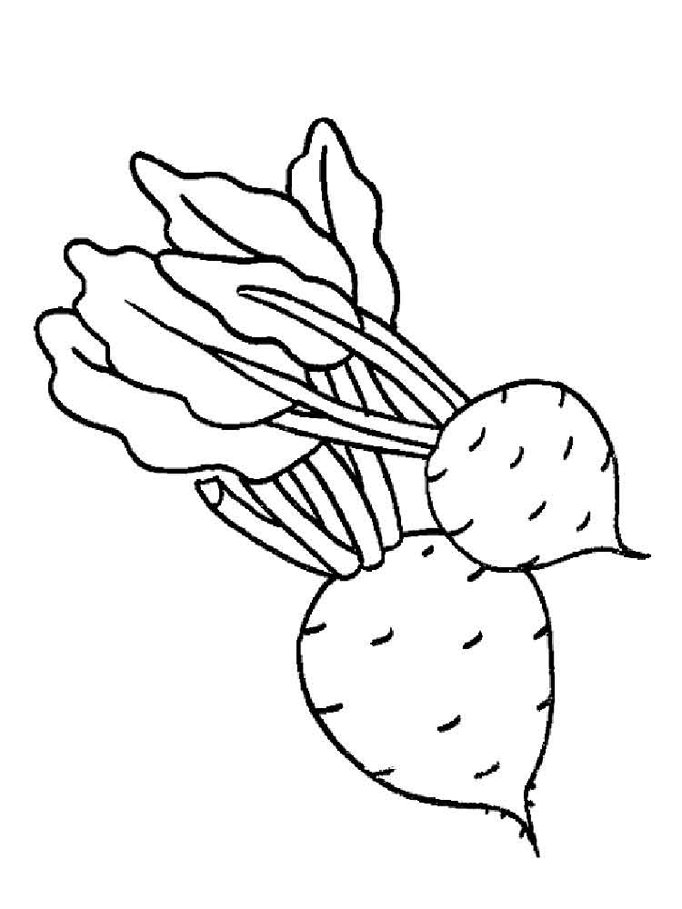 Beet Coloring Pages Download And Print Beet Coloring Pages