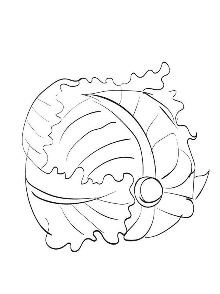 Cabbage coloring pages Download
