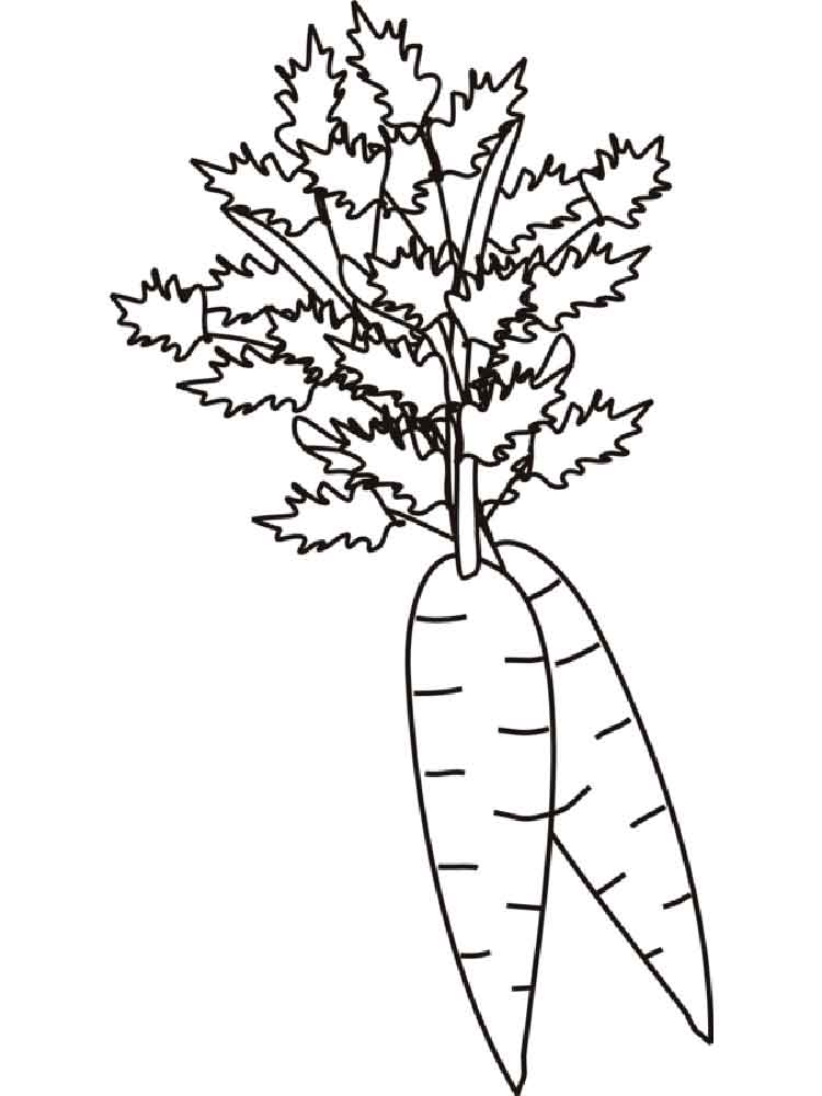Carrot Coloring Pages Download And Print Carrot Coloring