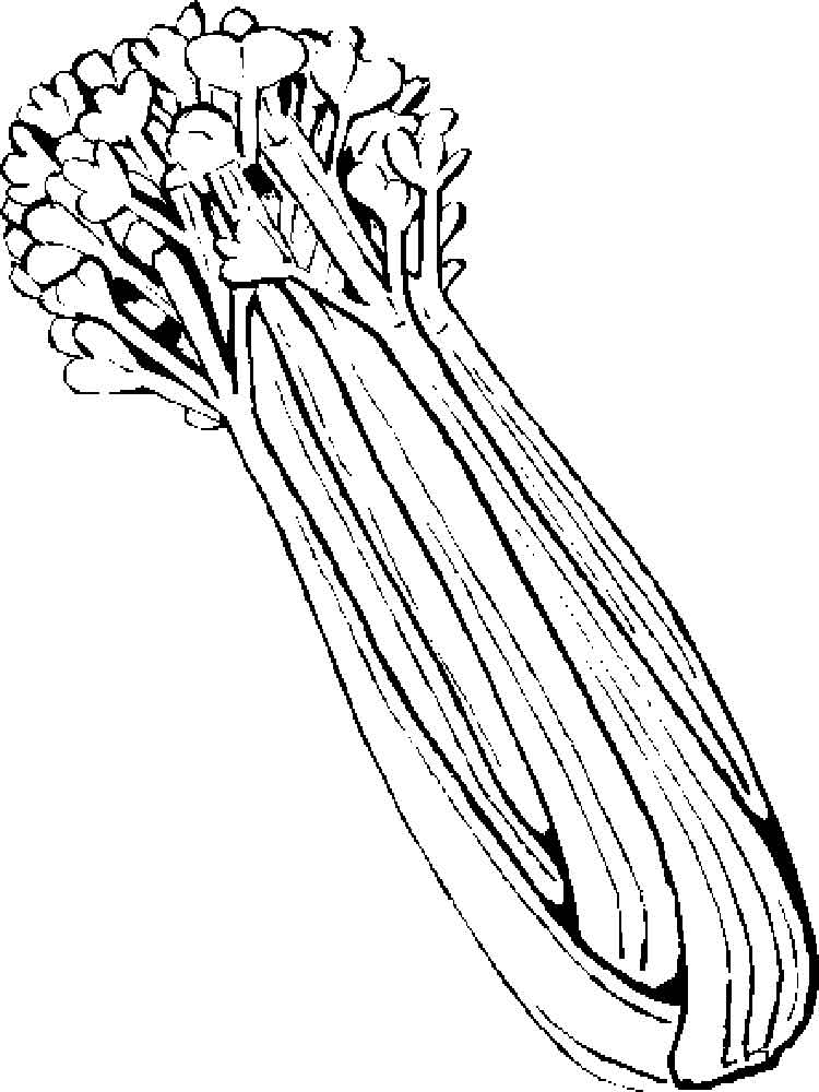 Vegetables Celery Coloring Page 1
