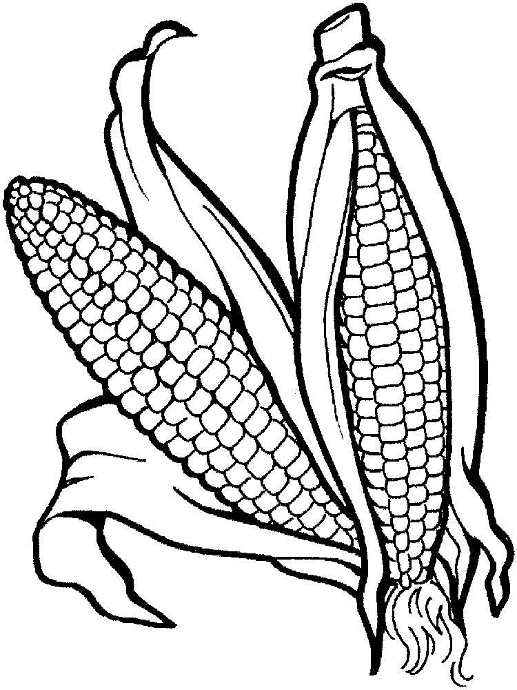 Corn coloring pages. Download and print Corn coloring pages