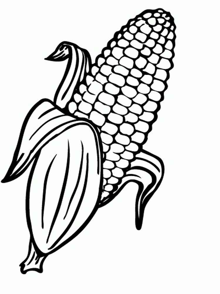 Corn Coloring Pages And Print